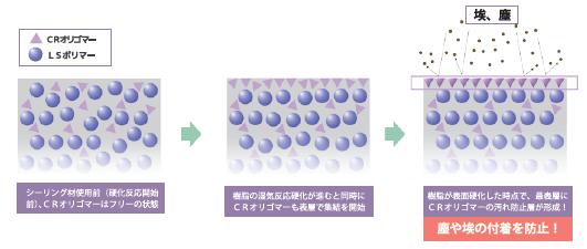 オート化学工業 オートンイクシード 写真6